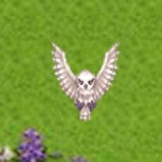 Activities of OWL RPG