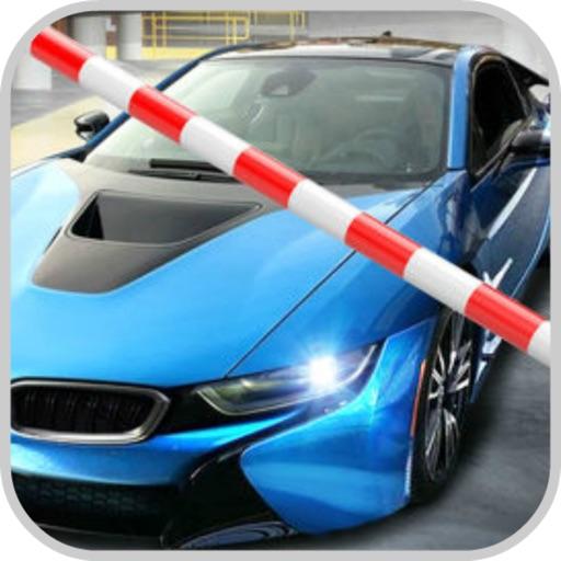 Luxury Car Driving: Multi Park