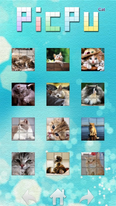 Screenshot #2 pour PicPu - Cat Picture Puzzle