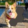 Hexa Puzzle Jigsaws - iPhoneアプリ