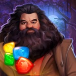 Harry Potter: Puzzels & Magie