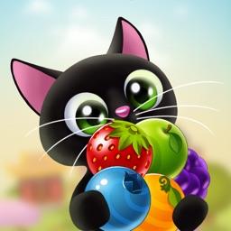 Fruity Cat Pop: bubble shooter