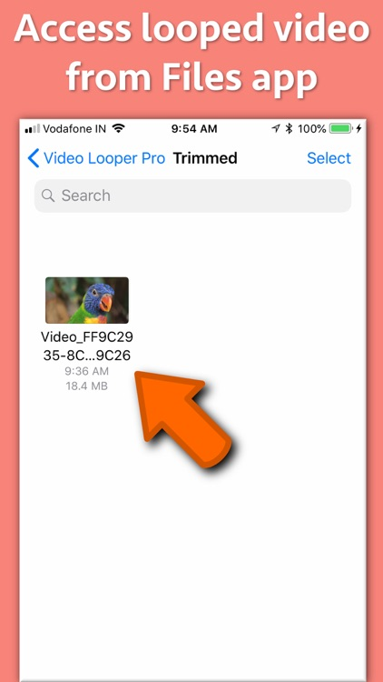 Video Looper Pro screenshot-6