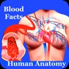 Human Anatomy Blood Facts 2000