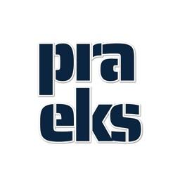 Praeks - AI Crypto Predictions