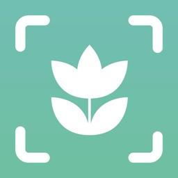 Plant ID Match: Identification