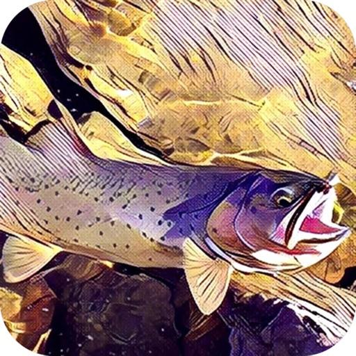 Montana Fishing Access