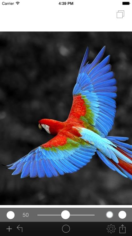 Photo Color Painter screenshot-3