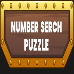 Puzzle Number Search