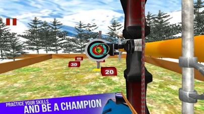 Bow Arrow Shooting Club screenshot 1