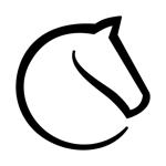 lichess • Online Chess на пк