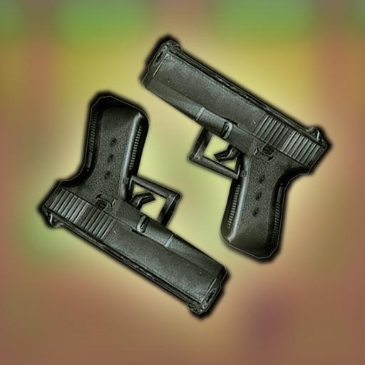 Gun, target and shooting