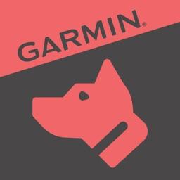 Garmin Canine