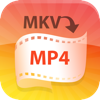 4Video MKV MP4 Converter - 4Videosoft Studio
