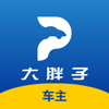 上海大胖仔汽车服务有限公司 - 大胖子  artwork