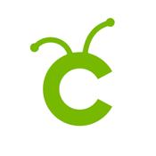 Cricut Design Space app review