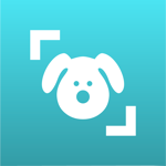 Dog Scanner pour pc