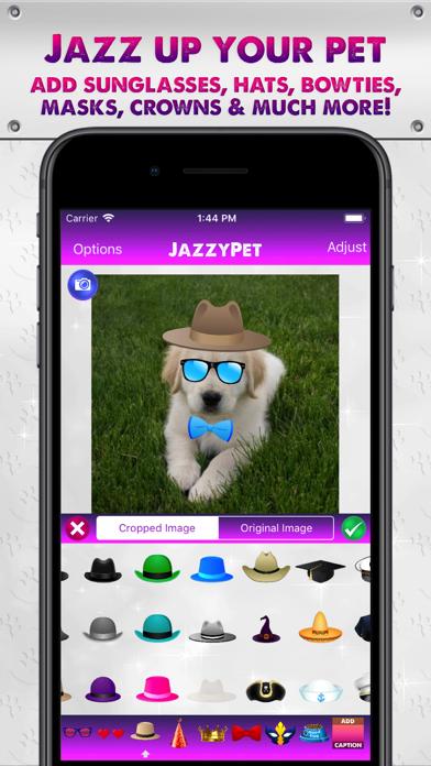 JazzyPet screenshot one