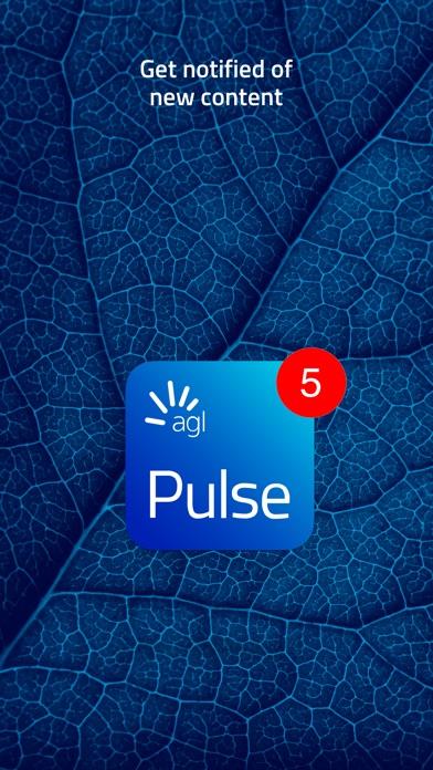 AGL Pulse-3