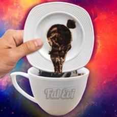 Fal Evi - Sesli Kahve Falı