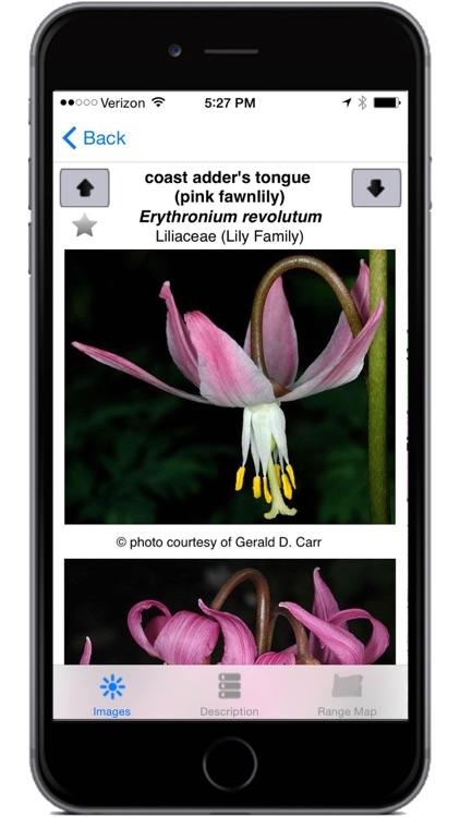 Oregon Wildflowers screenshot-3