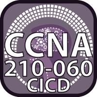Codes for CCNA collaboraton 210 060 CICD Hack