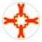 App Icon for Skydive Designer App in India IOS App Store