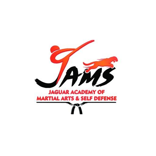 Jaguar Academy of Martial Arts