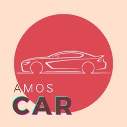 AmosCar for Tesla