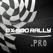 DX500RALLY.PRO