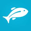Fishing Forecast - Fishbox App