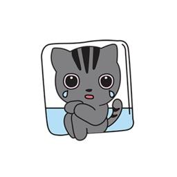 Funny Cat Cute Stickers