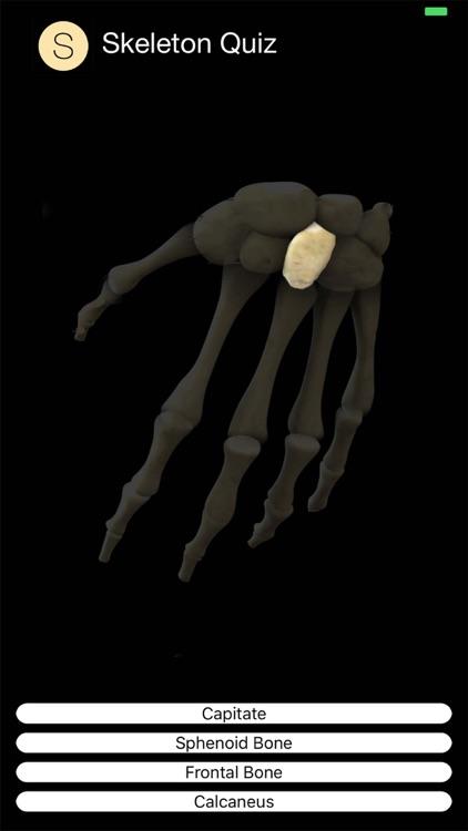 Skeleton Quiz screenshot-7