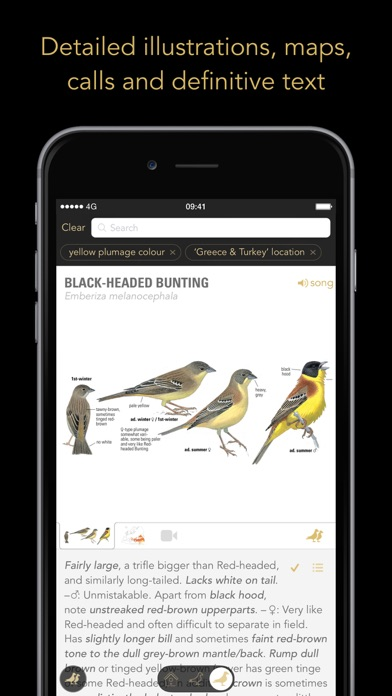 Screenshot for Collins Bird Guide in Portugal App Store