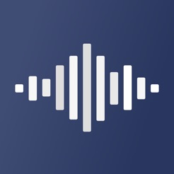 Voicenote - notes via voices