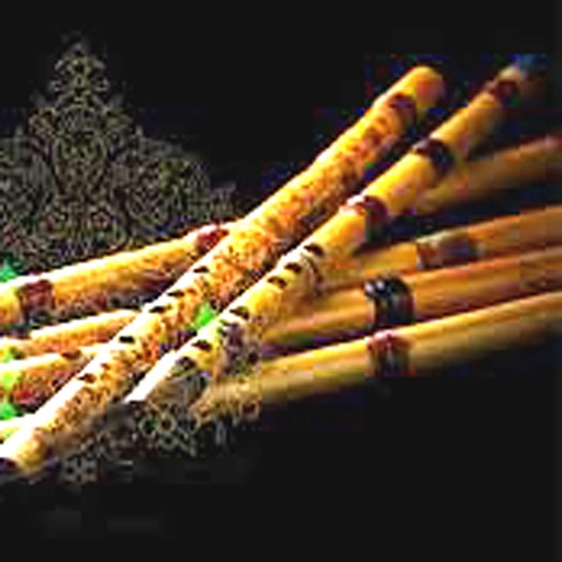 Persian Flute Pro (Ney)