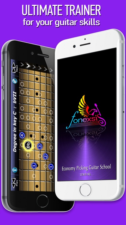 Economy Picking Guitar School screenshot-4