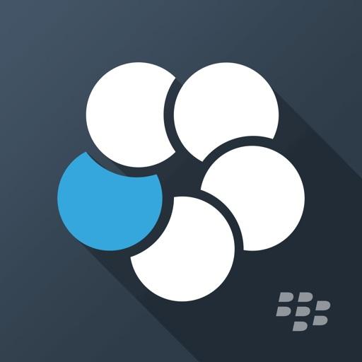 BlackBerry Work
