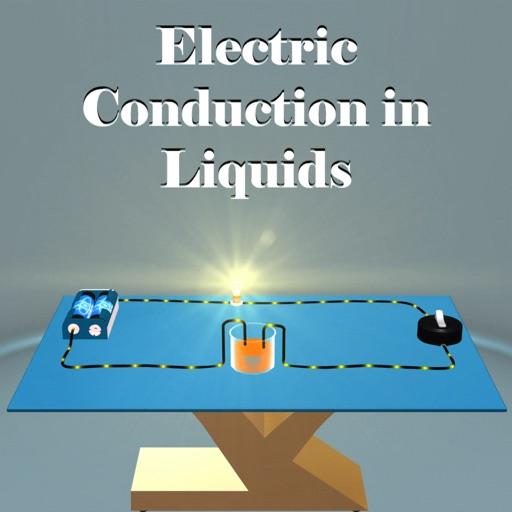Electric Conduction in Liquids