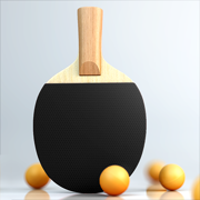 虚拟乒乓球: 随机球拍