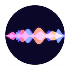 Emerson AI - Sprechen & Lernen