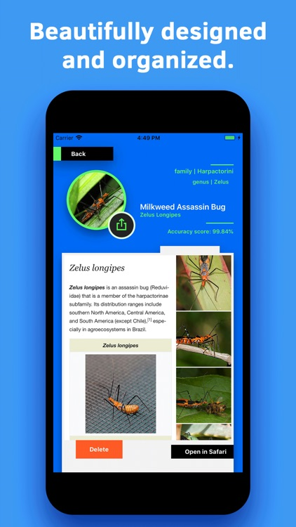 Insect Identification screenshot-4