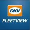 DKV Fleet View