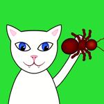 Kitty Krawlers