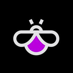FireBug : Night Vision Camera