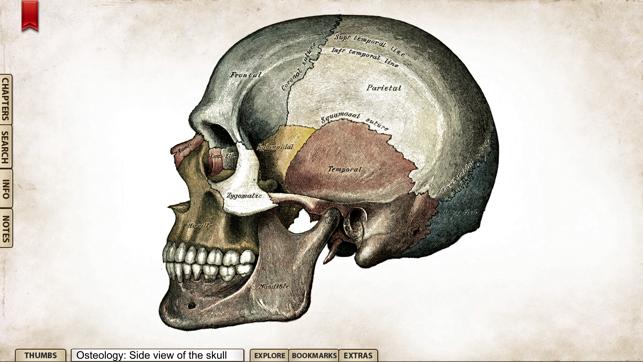 Grays Anatomy Premium Edition On The App Store