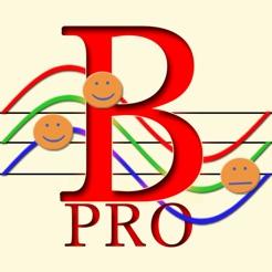 Biorhythmus Pro Maß Rhythmus des Lebens