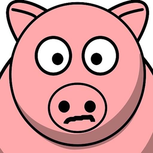 Piggy Plane