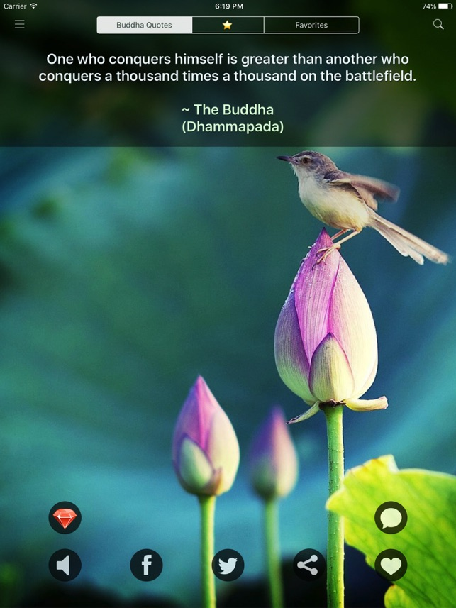 Buddha Quotes Daily Buddhism On The App Store