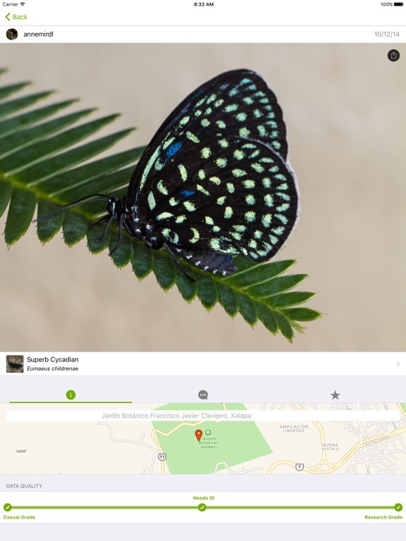 iNaturalist Screenshot